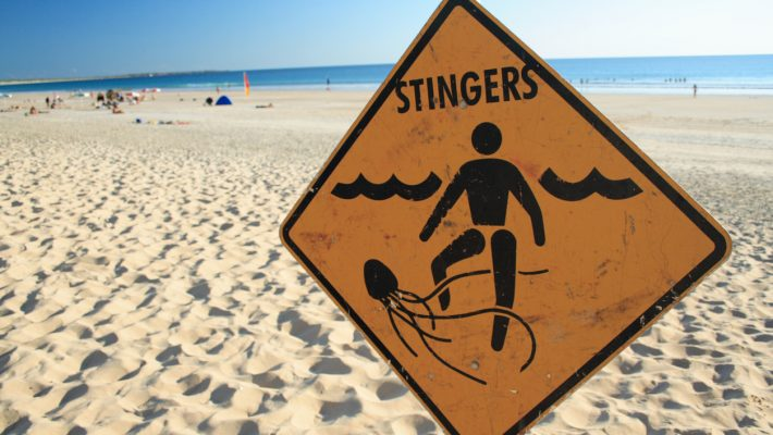 Jellyfish Sting: Symptoms, Treatments, and More